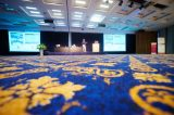 World Congress 2015 Gallery (50/574)