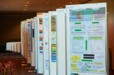 World Congress 2015 Gallery (448/574)